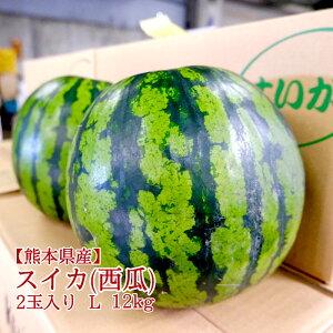 【熊本県産】すいか 2玉入り 約10kg 送料無料 西瓜 スイカ ウォーターメロン