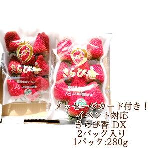 【静岡県産】メッセージカード付 きらぴ香DX 2パックセット 560gきらぴ香 いちご イチゴ バレンタイン 静岡