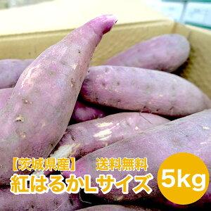【千葉茨城県産】紅はるか 5kg Lサイズ 12〜16本入れ サツマイモ さつまいも 薩摩芋