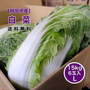 【静岡県産】白菜 6玉入り 15kg 1玉2.5kg 送料無料