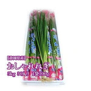 【静岡県産】 おしゃれねぎ 100g 30入り 約3kg ネギ ねぎ 青ネギ 送料無料 青菜 野菜 葉ネギ 葉葱