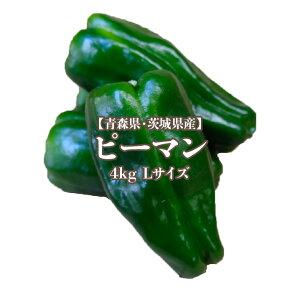 【青森県・茨城県産】ピーマン 4kg Lサイズ約80-90個入り 約50g 送料無料 greenpepper ナス科 トウガラシ属 piment pimento ビタミンC β-カロテン