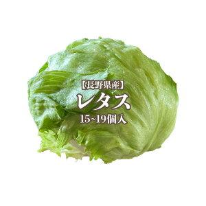 【産地応援クーポン対象商品☆】【長野県産】レタス L〜2L 15〜19個入 送料無料 野菜 サラダ うまい 萵苣 チシャ lettuce