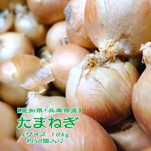 【兵庫県産】たまねぎ 10kg L 約50個入 1玉約200g 北見 玉葱 玉ねぎ オニオン onion カレー 業務用