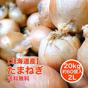 【北海道産】たまねぎ 20kg 2L 約60個入 1玉約300g 北見