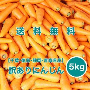 【静岡県産】訳ありにんじん 5kg 34〜45本入り 送料無料 ニンジン 人参 carrot