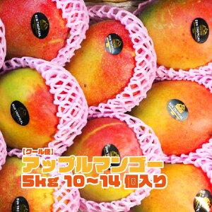 【ブラジル産】アップルマンゴー 10~14個入 約5kg 箱売り 送料無料 マンゴー