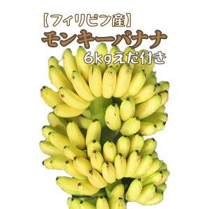 【フィリピン産】モンキーバナナ 6kg 枝付き 箱売り 送料無料 セニョリータバナナ ベイビースイート イナルニバ バナナ
