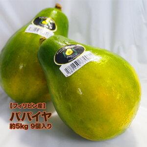 【フィリピン産】パパイヤ 約5kg 9個入れ 1個550g以上 送料無料 パパイア 木瓜 トロピカルフルーツ 乳瓜