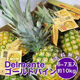 【フィリピン産】デルモンテ ゴールデンパイン 10kg 6〜7玉入れ パイナップル パイン