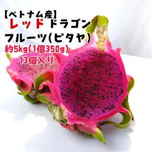 【ベトナム産】レッドドラゴンフルーツ M 13入り 5kg 1個350g以上 送料無料 ピタヤ トロピカルフルーツ 赤