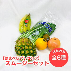 【はまべじ特製】スムージーセット 送料無料 バナナ キウイ グリーン 小松菜 パイン オレンジ グレープフルーツ ルビー