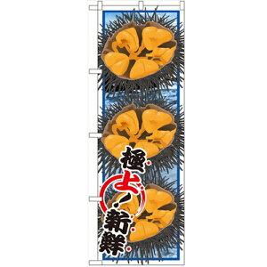 のぼり 【「ウニ 絵旗」】のぼり屋工房 SNB-1567 幅600mm×高さ1800mm【業務用】