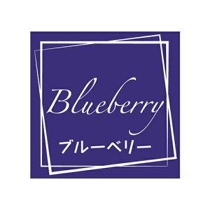 フレーバーシール ブルーベリー 98片 /業務用/新品