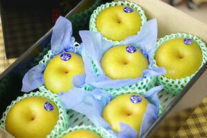 栃木豊水通信販売 那須野自信作和梨を販売取寄。糖度約13度 中箱 約7玉〜9玉 栃木産