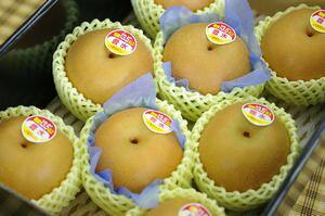 新潟豊水通信販売 しろね地区糖度約13度の和梨を通販で取寄。一糖賞・糖鮮確実・梨の実館 中箱 約7玉〜9玉 新潟産