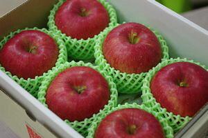 シナノスイートりんご通販 長野生まれのシナノりんごを販売取寄。小箱 約5玉〜約6玉 長野・他産地