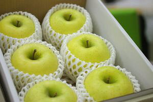 シナノゴールドりんご通販 爽やかな酸味が特徴のシナノりんごを販売取寄。小箱 約5玉〜約6玉 山形・長野・他産地