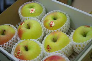 ぐんま名月りんご通信販売 お歳暮林檎に。隠れた銘品種りんごを販売取寄。中箱 約7玉〜約9玉 群馬・長野・他産地