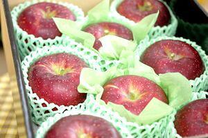 秋映りんご通信販売 真っ赤に色づく長野オリジナルりんごを販売取寄。中箱 約7玉〜約9玉 長野・他産地