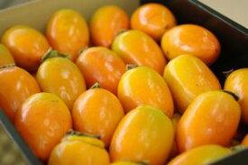 筆柿(ふでがき)通信販売 愛知県幸田町特産の珍宝柿を販売取寄。約5kg 約30玉〜 愛知産