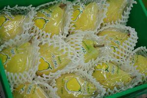 お歳暮ルレクチェ通信販売 新潟県特産の西洋梨レクチェを販売取寄。約4kg 約8玉〜約12玉