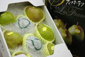 スーパーラフランス通販 山形県天童市の糖度14度のお歳暮ラフランスを取寄。約3kg 約7玉〜約9玉