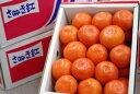さぬき紅みかん通販 お歳暮香川県みかんに。小原紅早生は果皮・果肉も紅色 約2・5kg