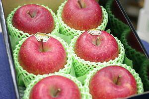 飛馬(ひうま)ふじりんご通販 青森県弘前市相馬村産の糖度14度お歳暮サンふじりんごを販売取寄。小箱 約5玉〜約6玉
