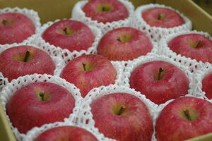 山形ふじりんご取寄販売 朝日町・村山地域お歳暮サンふじを通販で。約5kg 約14玉〜約18玉