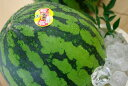 極実西瓜通販 鳥取倉吉産スイカを販売取寄。お中元果物ギフトにL〜4L 1玉