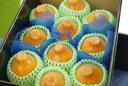 長期熟成しらぬいデコポン通信販売 初夏に味わえる特別な柑橘を販売取寄。約3kg 約7玉〜約10玉 福岡県産