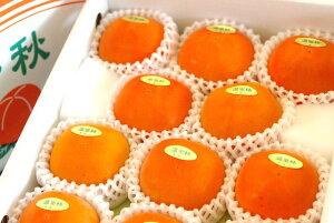 新秋柿(しんしゅうがき)通販販売 和歌山温室栽培で糖度約18度の柿を販売取寄。約10玉〜約14玉 和歌山産