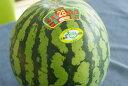 富里西瓜通販 千葉産。一果取りスイカ販売取寄。果物ギフト1玉 L〜4L