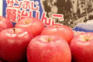 賢治りんご通販 岩手サンふじお歳暮販売 糖度14度以上 JAいわて花巻 5kg 約14玉〜約18玉