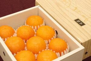 柑橘あすみ販売 高糖度系の新柑橘を通販で取り寄せ。約1.5kg 約5玉〜約8玉