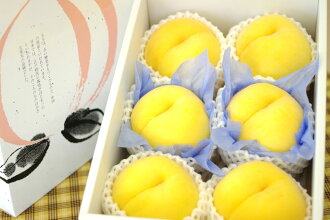 Golden peaches and other varieties of yellow peach caskets 6 ball Yamagata and other regions