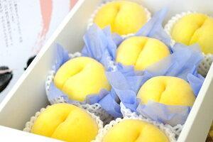 黄桃通信販売。黄金桃・他品種の黄色いモモを販売取寄。フルーツギフトに 中箱 約7玉〜約9玉 山形・他産地