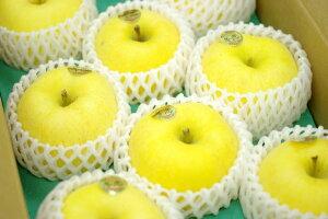 冬恋はるかりんご通信販売 岩手県お歳暮りんご糖度15度以上を販売取寄。約7玉〜約9玉