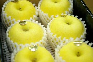 お歳暮はるかりんご販売 岩手県産 純情はるか糖度14度以上通販 小箱 約5玉〜約6玉