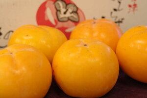 みしらず柿通販 会津身不知柿を販売お取り寄せ 福島県 中箱 約11玉 2L〜3L 個選及びJA