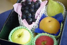 フルーツ頒布会「6ヶ月」果物コース定期購入 ※送料は別途6回分加算されます※