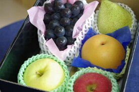 二次会景品果物詰め合わせ 高級フルーツセット小箱タイプ。人数・ご予算・ご相談下さい