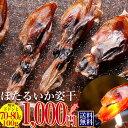 1000円ポッキリ 送料無料 ほたるいか 姿干 素干し 100g グルメ食品 ホタルイカ 干物 訳あり 大人気! お土産 日本海…
