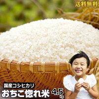 米コシヒカリお米4.5kg白米平成30年産送料無料国産セールおちこ惚れ米