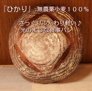 「ひかり」 無農薬小麦100%!さっくりふんわりかる〜い♪〜優しい光のような食事パン〜 オーガニック 添加物不使用 卵不使用 乳製品不使用 無農薬小麦 天然酵母パン 健康パン 保存食 お