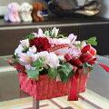 【生花】母の日の花かご★DX★母の日ギフト花カーネーション送料無料(一部地域を除く)母の日ギフト送料無料花母の日母の日プレゼント