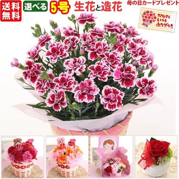 母の日 カーネーション5号選べる生花と造花