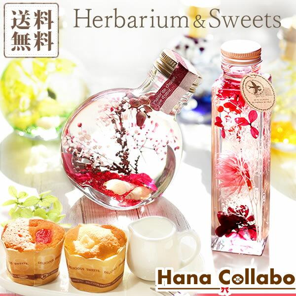 ハーバリウム herbarium 送料無料!誕生日プレゼント 女性 ギフト 贈り物 選べる花とスイーツセット お祝いや記念日に あす楽17時
