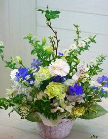 誕生日 開店祝い 卒業式 花 卒業式 プレゼント おまかせ 白グリーン、ブルー系フラワーアレンジメント 花 人気ランキング 花ギフト 花束 バレンタイン (就任 送別 誕生日 などにも) バラ 就任 送別 32